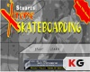 เกมส์ Extream SkateBoarding